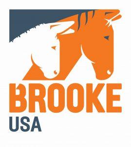 Brooke_USA logo